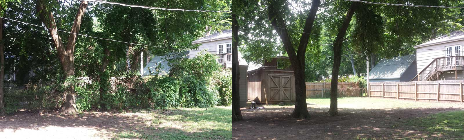 Fenceline Cleanup: Before and After