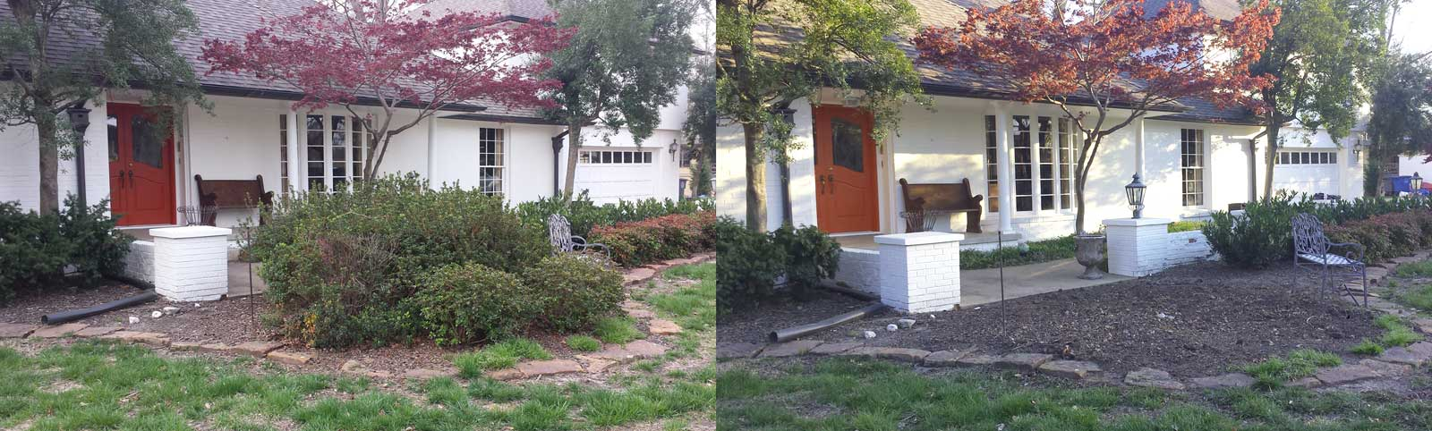 Landscape Cleanup: Before and After